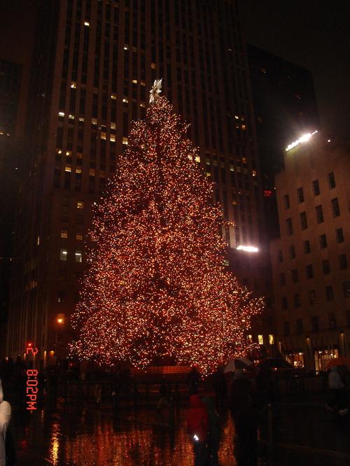 "The famous ""Chrismas Tree"""